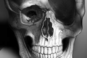 shell_skull_zoom-783717.png